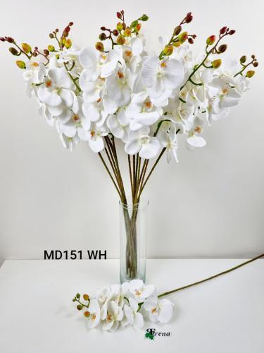 MD151 WHITE