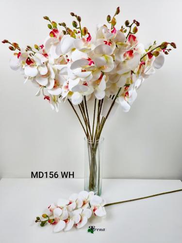 MD156 WHITE